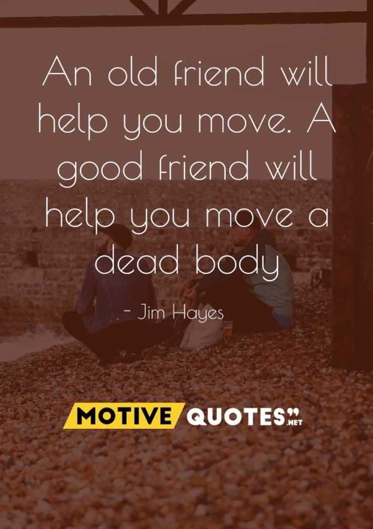 funny friendship quotes about funny moments of friends brainy