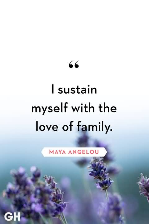 30 Family Love Quotes To Show The Necessity Of Family Brainy Readers