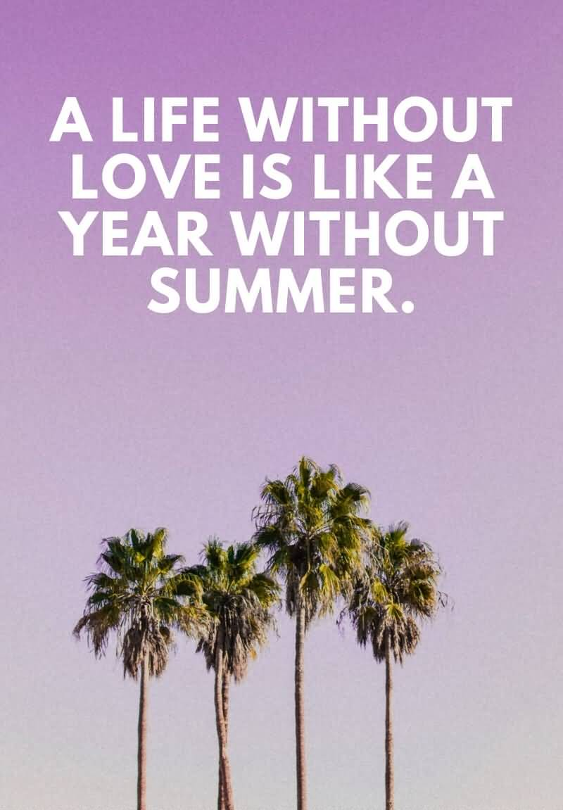 22 Best Summer Quotes About Importance Of Enjoyment In Life Brainy Readers